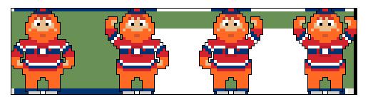 Youppi! (Montreal Canadiens)